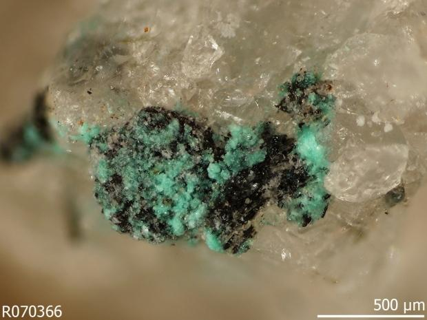 Chalconatronit mineral