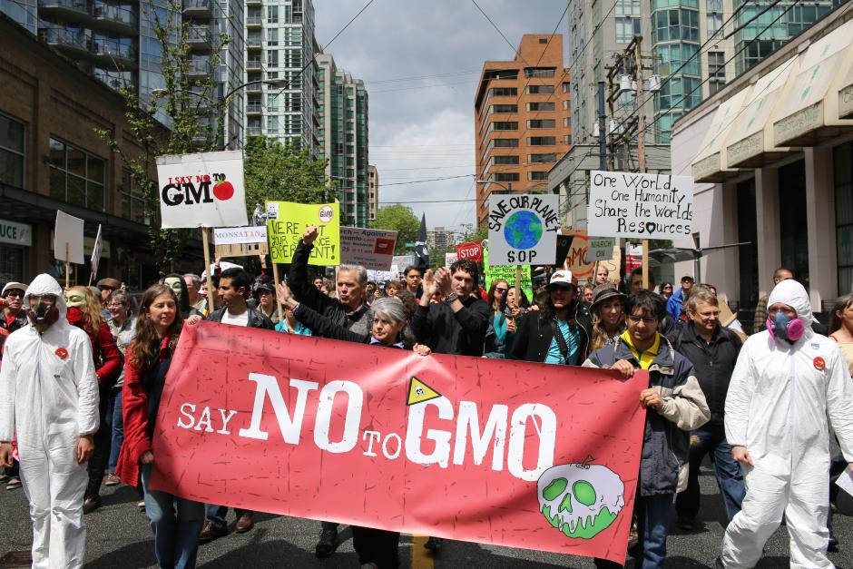 gmo demonstration Monsanto
