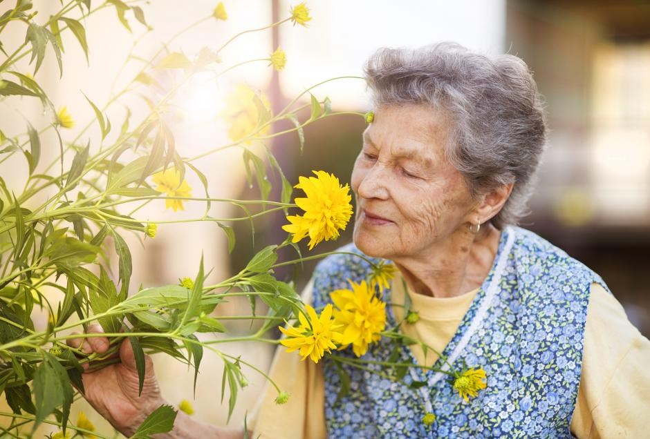 old people smell mortality death