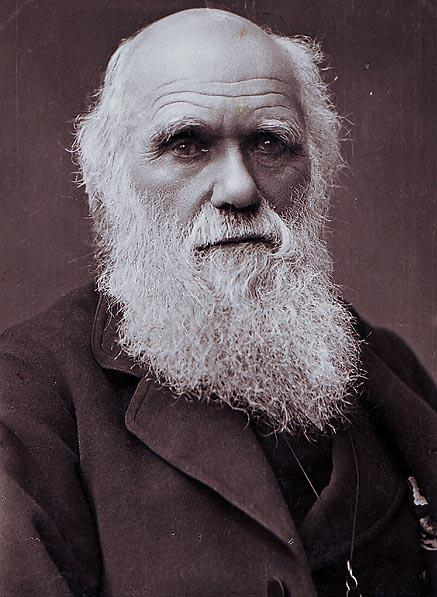 darwin beviserne for evolution